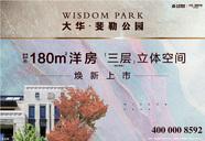 [浦东]大华斐勒公园