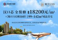 [江岸]星河2049