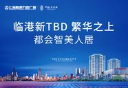 上海浦东临港新城万达未来城